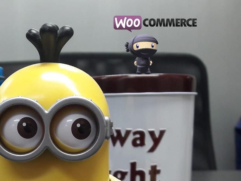 คำนวณค่าจัดส่งสินค้าตามน้ำหนัก Woocommerce wordpress   รับทำเว็บไซต์ด้วย WordPress