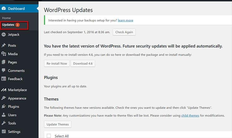 การอัพเดต Theme WordPress