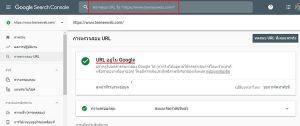 Google Search Console - การตรวจสอบ URL